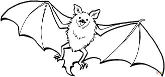 pictures of bats coloring page arterey info