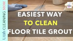 easiest way to clean floor tile grout