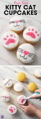 25 best cat cupcakes ideas on pinterest kitty cupcakes love