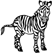zebra coloring pages clipart panda free clipart images
