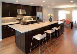 shaker style kitchen with functional schoolhouse type lighting