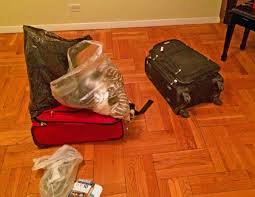United Baggage Lost Lufthansa Lost Luggage Business Insider