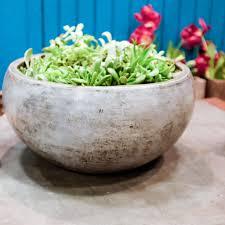 Low Bowl Planters by Planters Repose Home U0026 Garden