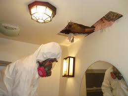 how to find mould in the home power environmental services