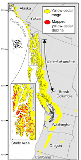 Map Of Southeast Alaska by Pacific Northwest Research Tation Yellow Cedar Are Dying In