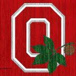 Ohio State Curtains Shower Curtains Osu Shower Curtain Fresh Ohio State Bathroom