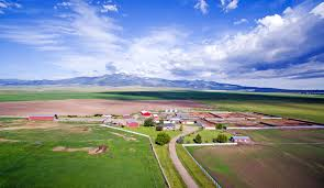 montana montana ranches farms and recreational properties for sale swan