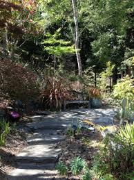 native plant nursery santa cruz tropical plants gardening tips for the santa cruz mountains