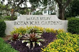 Botanical Gardens Sarasota Selby Gardens Selects Nationally Recognized Firm To Guide Master