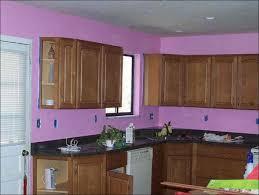 blue kitchen paint color ideas kitchen paint my kitchen kitchen wall color ideas light grey