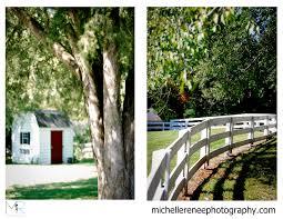 a beautiful backyard wedding amy travis michelle renee