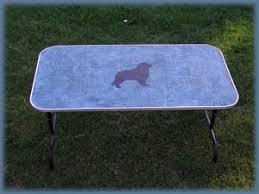 large dog grooming table gossamer designs about the artist
