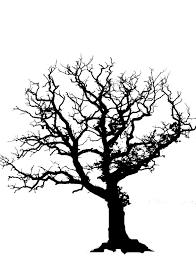 dead tree silhouette clip art 37