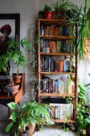 Bedroom Plants Top 25 Best Apartment Plants Ideas On Pinterest Air Cleaning