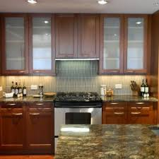 Stainless Steel Kitchen Cabinet Doors Home Decor Captivating Stainless Steel Kitchen Cabinets Photos