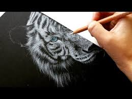 25 beautiful black paper ideas on pinterest black paper drawing