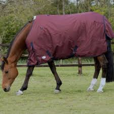 Rambo Lightweight Turnout Rug Horse Turnout Rugs From Rideaway