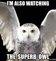 Superb Owl Meme - i m also watching the superb owl hedwig meme generator