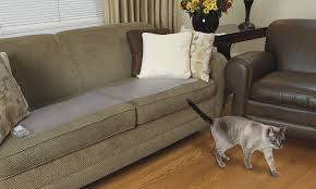 Uncomfortable Couch 7 Simple Tricks On How To Keep Cats Off Furniture U2013 A To Z Pet Care