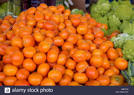 farm to table concept orange color tangerine citrus citrus available at a farmers market