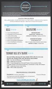 Resume Template Nz Professional Cv Examples Nz It Resume Templates Microsoft Word