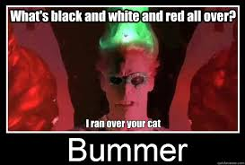 Riddler Meme - what s black and white and red all over i ran over your cat