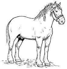 coloriage chevaux a imprimer gratuit 1001 animaux