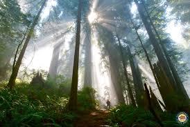 thanksgiving camping california california state parks