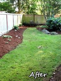 Fence Line Landscaping by Nice Fence Line Landscaping Ideas Bam6q6 U2013 Blog About Mia