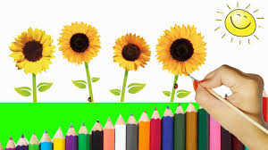 how to draw a sunflower step by step for kids coloring pages a