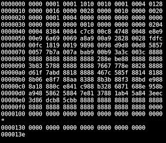 binary file wikipedia