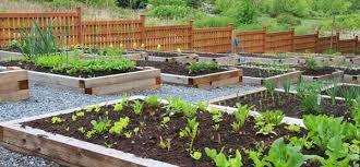 raised garden beds texas home and garden