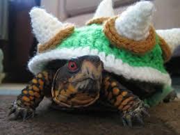 Turtle Halloween Costume Halloween Crochet Furbabies 10 Free Pet Costume Patterns