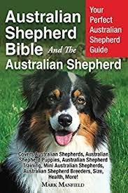 belgian sheepdog training guide australian shepherd bible and the australian shepherd your