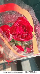 send flowers to someone send flowers to someone stock images royalty free images