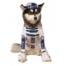 star wars costumes star wars r2 d2 dog costume with same day shipping baxterboo