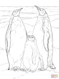 emperor penguin family coloring page free printable coloring pages