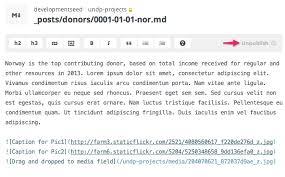 Neque Adipiscing An Cursus by Github Undp Open Undp Org Undp Project Portal