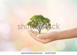 we ideas planted stock photo 443174122