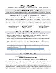 sample resume executive manager vp of it resume it director resume executive resume writer for