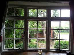 digital window how to bring nature into your digital world 6 pay attention to