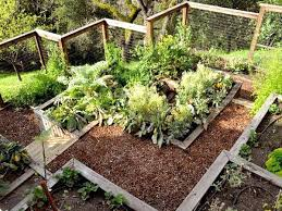 Backyard Vegetable Garden Ideas Planting Hillside Vegetable Garden Slope Pictures Plans