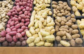 some carbs linked to lung cancer even non smokers at risk ny