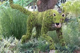 Horse Topiary 309 Best Topiary Images On Pinterest Topiary Garden Garden Art