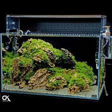 Aquascaping Rocks Random Pick 11pcs Ada Dragon Stone Rock Aquarium Moss Plant Shrimp