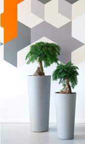 Tall Plastic Planters by Plant Stand Impressive Plastic Plant Holders Photos Inspirations
