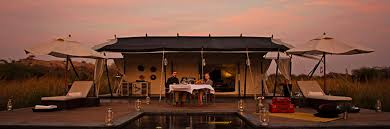 pali resorts place to stay leopard camp rajasthan soaring