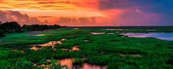 Georgia Travel Contests images Contests golden isles georgia jpg