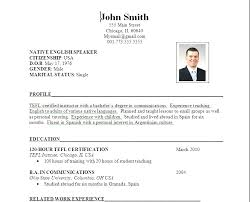 application resume format professional application resume format pdf sle cv pdf gse