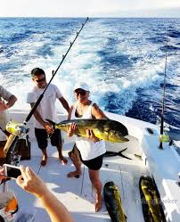 Sport Fishing Flags Armada Sportfishing Cabo San Lucas Mexico Fishingbooker